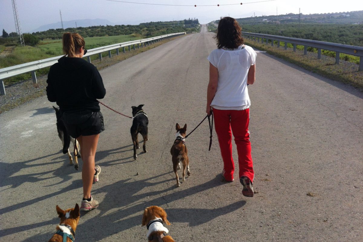 Sarah from SOS Animals Switzerland during a visit to the Spanish shelter